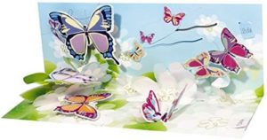 Noel Tatt Panoramic Butterflies Pop-up Greetings Card