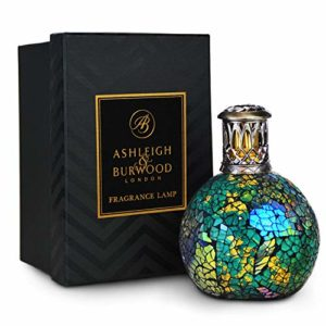 Ashleigh and Burwood Peacock Feather Fragrance Lamp