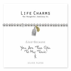 Life Charms You Are The Gin To My Tonic bracelet