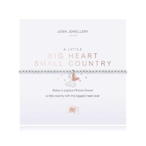 Joma Jewellery Welsh a little Big Heart Small Country bracelet