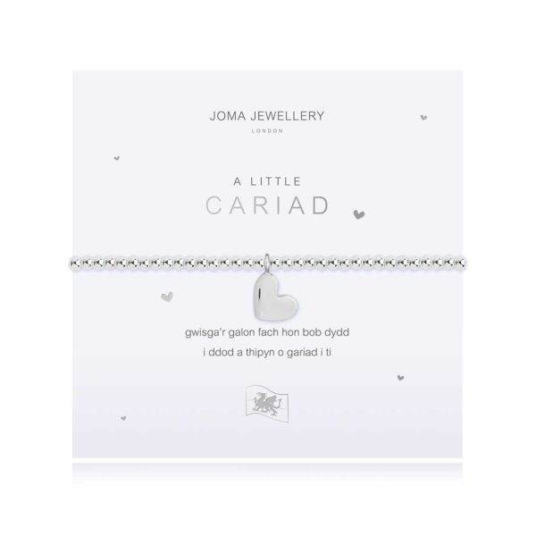 Joma Jewellery a little Welsh Love bracelet
