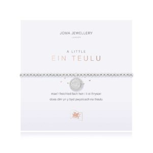 Joma Jewellery a little Welsh our Family bracelet
